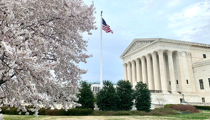 Supreme Court with a cherry blossom in the foreground